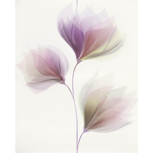 Cersanit Loris White Inserto Flower 40x50 dekor szett (2 db)